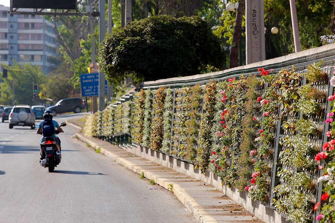jardin-vertical-avenida-tobalaba